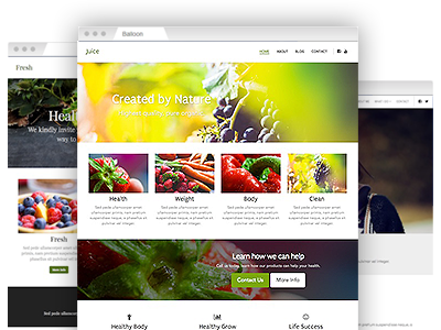 A selection of simple–to–customize website themes